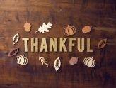 364 Days of Thanksgiving