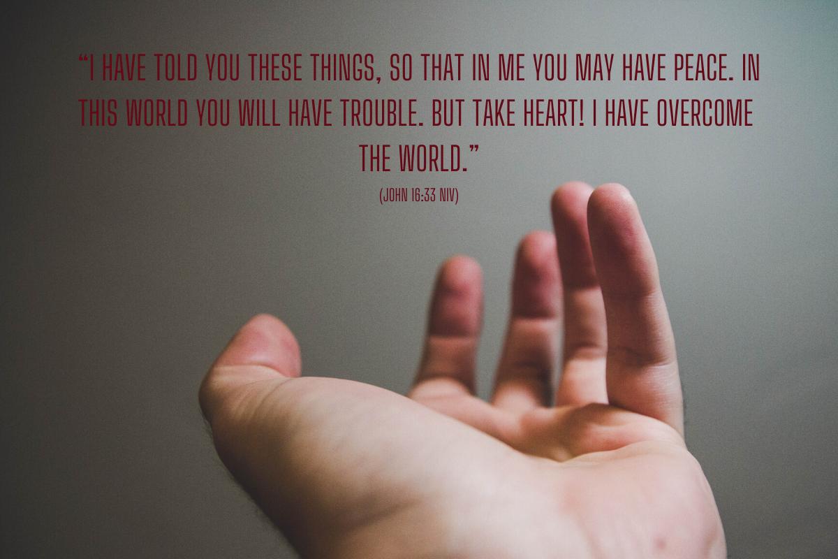 Bible Study | Revelation 7:1-17